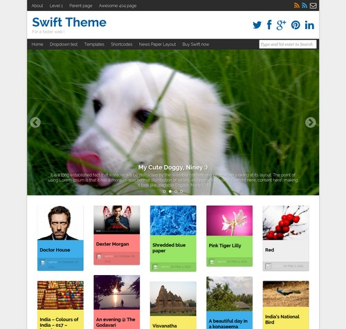Swift Basic WordPress Free Theme